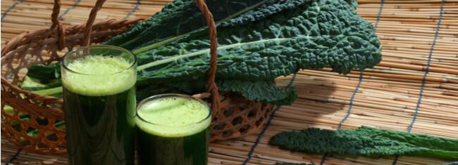 Fonte de nutrientes e vitaminas, a couve pode ser benéfica para a dieta e recuperação do atleta
